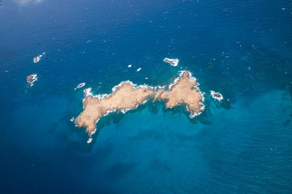 gallery-ocean-week (1)